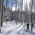 Snowshoeing the Willow Heights Trail.- Willow Heights Snowshoe