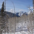 Looking west down the valley at Mount Raymond (10,241 ft), the tallest peak in Big Cottonwood Canyon.- Willow Heights Snowshoe