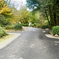 Another nice Oregon State Park campground.- Alfred Loeb State Park Campground