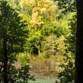 Fall color along the Chetco River.- River View Trail