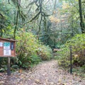 Trailhead for the Redwood Nature Trail.- Redwood Nature Trail