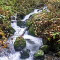 One of many cascades along this hike.- Redwood Nature Trail