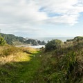 The Oregon Coast Trail crosses the trail to Cape Ferrelo.- Cape Ferrelo Hike