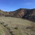 Looking ahead toward Montañon Ridge.- Santa Cruz Island: Prisoner's Harbor to Scorpion Anchorage