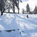 Sledding in Drake Park, Bend.- Drake Park Sledding