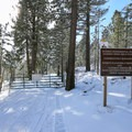 A locked gate closes Sage Hen Road to all traffic aside from those visiting the Field Station.- Sagehen Summit