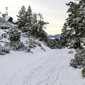 Snowshoeing to Skunk Harbor.- Skunk Harbor