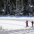 The snow-covered meadow is a great spot for snowshoeing and cross-country skiing.- Tahoe Meadows: Ophir Creek