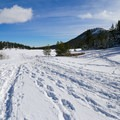 Tracks begin to lessen as you venture further from the road.- Tahoe Meadows: Ophir Creek
