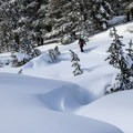 Ophir Creek is only sometimes visible beneath the snow.- Tahoe Meadows: Ophir Creek