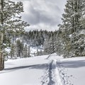Backcountry skiing just about a mile from the highway.- Tahoe Meadows: Ophir Creek