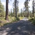 Entry road into Indian Ford Campground.- Indian Ford Campground