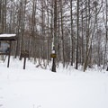The trail register is located just beyond the trees by the road.- Carpenter Road Ski Trails
