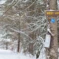 The West Loop Trail is among the first intersections.- Carpenter Road Ski Trails