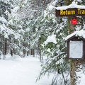 Most intersections have a small map and good signage.- Carpenter Road Ski Trails