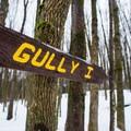 One of four gullys.- Egypt Road Ski Trails