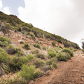 Gaining elevation on the Sandstone Peak Trail.- Sandstone Peak, Circle X Ranch