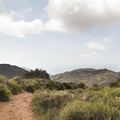 Trails that keep going up.- Sandstone Peak, Circle X Ranch