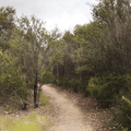 Mishe Mokwa Trail.- Sandstone Peak, Circle X Ranch