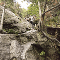 The route through the trees.- Mount Mansfield via Sunset Ridge Trail