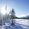View from the northern tip of Mardee Lake.- Mardee Lake Snowshoe