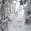 Snowshoeing the trail to Whiteface.- Whiteface Mountain + Esther Mountain Snowshoe