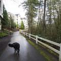 North Johnson Creek Trail between Cedar Hills Boulevard and Valeria View Drive.- North Johnson Creek Trail