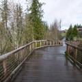 North Johnson Creek Trail in Merrit Orchard Park.- North Johnson Creek Trail