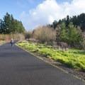 North Johnson Creek Trail at the Cedar Mill Wetlands.- North Johnson Creek Trail