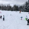 The easy slope at Gold Creek Sno-Park is ideal for families.- Gold Creek Sno-Park Sledding