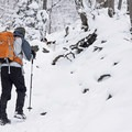 Hiking Ferguson Canyon in winter.- Ferguson Canyon Snowshoe