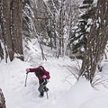 Serious elevation gains in the Wasatch!- Ferguson Canyon Snowshoe