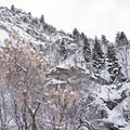 The steep walls of Ferguson Canyon.- Ferguson Canyon Snowshoe