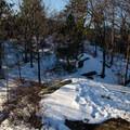 Summit area.- Owl's Head