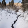 Reynolds Creek .- Reynolds Gulch Snowshoe