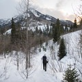 Reynolds Gulch in winter.- Reynolds Gulch Snowshoe