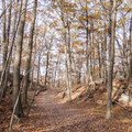 Leave the Appalachian Trail and head southwest.- Anthony's Nose