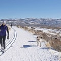 Dogs roam freely during hikes, skis, or snow rides.- Round Valley Trails, Quinn's Trailhead