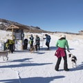 Everyone getting ready to enjoy the snow.- Round Valley Trails, Quinn's Trailhead