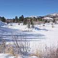 Large open spaces abound.- North Basin Trails, Woods Trailhead
