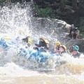 Rafting through Miller's Folly rapid (Class IV).- Lower New River Gorge: Cunard to Fayette Station