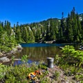 View of Tuck Lake from backcountry site- Tuck + Robin Lakes
