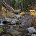 Alger creek, the first water source. - San Gorgonio via Momyer Creek Trail + Vivian Creek Trail