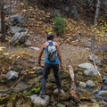 Crossing Alger Creek.- San Gorgonio via Momyer Creek Trail + Vivian Creek Trail