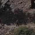 Hiking San Gorgonio via the Momyer Creek Trail.- San Gorgonio via Momyer Creek Trail + Vivian Creek Trail