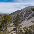 Nearing the end of San Bernardino Peak Divide Trail.- San Gorgonio via Momyer Creek Trail + Vivian Creek Trail