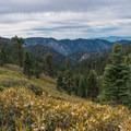 You'll leave the Fall Creek Trail for the San Bernadino Peak Divide Trail.- San Gorgonio via Momyer Creek Trail + Vivian Creek Trail