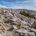 Junction with Vivian Creek. - San Gorgonio via Momyer Creek Trail + Vivian Creek Trail