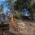 The trail junction for San Bernardino.- San Gorgonio via Momyer Creek Trail + Vivian Creek Trail
