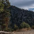 Saxton Camp.- San Gorgonio via Momyer Creek Trail + Vivian Creek Trail